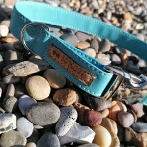 ocean blue collar