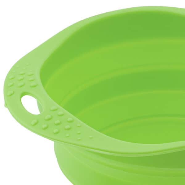collapsible green bowl