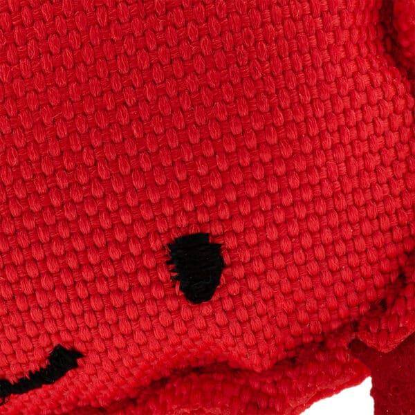 close up catnip crab