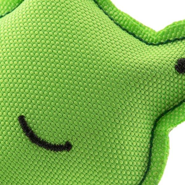close up catnip frog